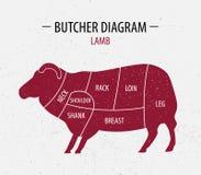 Coupe d'agneau Diagramme de boucher d'affiche pour des épiceries, viande Images stock