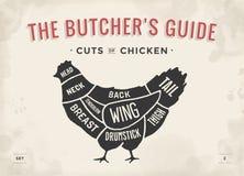 Coupe d'ensemble de viande Diagramme de boucher d'affiche et plan - poulet Tiré par la main typographique de vintage Illustration illustration stock