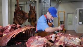 Coupe de boucher, transformant la viande fraîche Usine de traitement de la viande Industrie de saucisse tiré du meatman avec un c banque de vidéos
