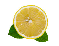 Coupe de citron Photo libre de droits