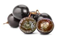 Coupe de raisin de Muscat Image libre de droits