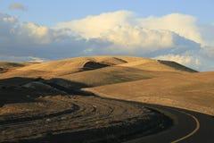 Coupe de route de zigzag par les champs de grain dans le Palouse Image stock