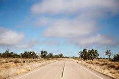 Coupe de route par une forêt d'arbres de Joshua dans le désert photos stock