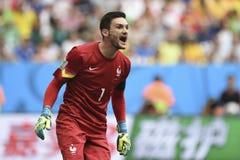 Coupe du monde 2014 Photos stock