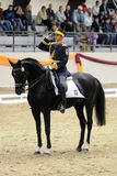 Coupe du monde de Dressage Photographie stock libre de droits