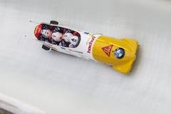 Coupe du monde de Rico Peter BMW IBSF Koenigssee 2016 Image stock
