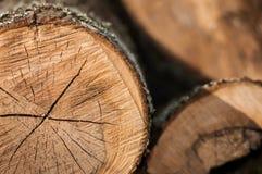 Coupe en bois Photographie stock libre de droits