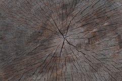 Coupe en bois de scie de texture Images stock