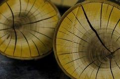 Coupe focalisée de morceaux de branche criquée en bois de cerise Photographie stock libre de droits