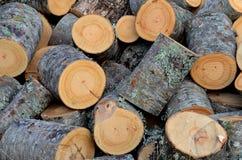 Coupe fraîche des rondins en bois du feu image stock