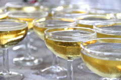 Coupe glasses of champagne Stock Photos