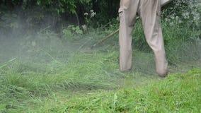 Coupe humide d'herbe de baisse de l'eau banque de vidéos