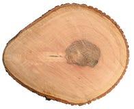 Coupe ronde d'arbre de cendre Images stock