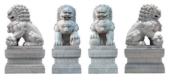 The coupe of stone Lion. The coupe of  Chinese style stone marble male and female lions statue with two perspective isolated on white Royalty Free Stock Photo
