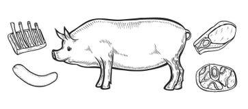 Coupes de jambon de viande de porc illustration de vecteur