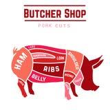 Coupes de porc Image stock