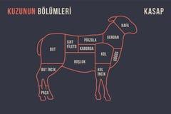 Coupes de viande Diagramme de boucher d'affiche et plan - agneau illustration stock