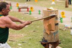 Coupeur en bois australien Dale Beams chez Adelaide Show royale, septembre 2014 Image stock