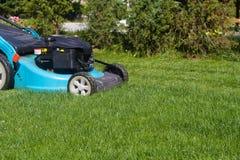 Coupez fraîchement l'herbe verte Images libres de droits
