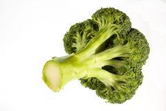 Coupez frais la tête du broccoli photographie stock
