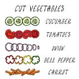 Coupez l'ensemble de légume Concombre, tomate, anneaux d'oignon, paprika, carotte Ingrédients de Coocing Nourriture fraîche de ré illustration stock