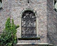 Coupez l'usine morte dans une fenêtre de ruine Image stock