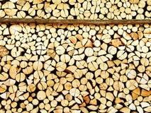 Coupez la barre en bois Image stock