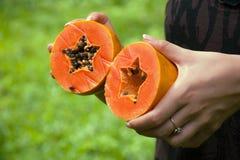 Coupez la papaye dans des mains Photos libres de droits
