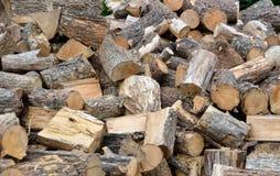 Coupez la pile de bois de chauffage Image libre de droits