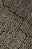 Coupez la surface de tronçon d'arbre comme fond Images libres de droits