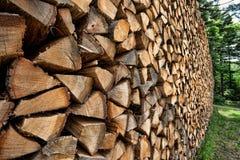 Coupez le bois, étant prêt pour l'hiver Image stock