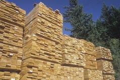 Coupez le bois de charpente soigné empilé Image libre de droits