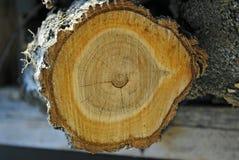 Coupez le bois, bois de chauffage, bois, rondin, matériaux naturels Photos libres de droits