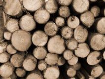 Coupez le bois de construction Images libres de droits