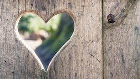 Coupez le bois de rondin avec la forme de coeur d'allégement, texture de fond Photographie stock