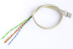 Coupez le câble de réseau Photographie stock libre de droits