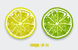 Coupez le citron Image stock