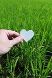 Coupez le papier avec le logo du coeur au-dessus de l'herbe verte Image libre de droits