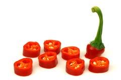 Coupez le poivre de /poivron d'un rouge ardent (le poivron) Images libres de droits
