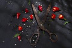 Coupez le poivron rouge image libre de droits