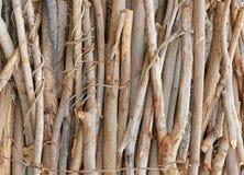 Coupez le rondin en bois de tronçon image libre de droits