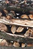 Coupez les arbres actionnés près Photographie stock libre de droits