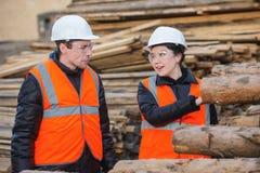 Coupez les arbres et les travailleurs Photo stock