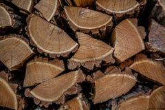 Coupez les morceaux en bois de chêne. Images libres de droits