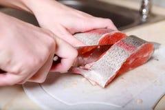 Coupez les poissons Photo libre de droits