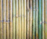 Coupez un morceau de bois en bambou vert Images libres de droits