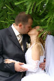 Couple. Kiss of bride and groom Stock Photos