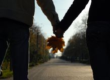 Couple. A couple with a yellow leaves Royalty Free Stock Images