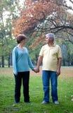 Couple. Senior couple walking at the park royalty free stock photos
