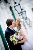 Couple. On the image there is bride and bridegroom. They are kissing royalty free stock photos